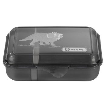 Step by Step Lunchbox Dino Life